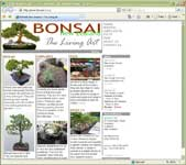 weblab - bonsai.co.nz